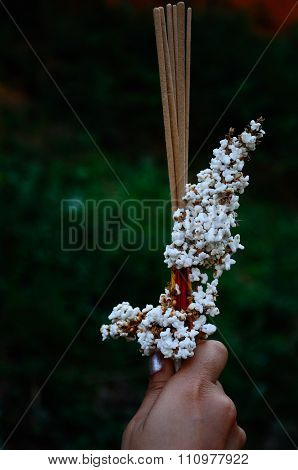 Popped rice and joss stick on hand