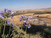 Golan Volcanic Park Avital Israel. Newly opened in 2013 r. Avital volcanic park in the area of the Golan Heights in Israel near the border with Syria poster