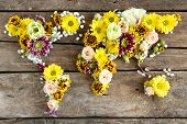 Map of world made from different kinds of flowers, close-up poster