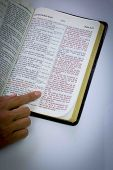 Human hand pointing on bible verse. Most popular. John 316. poster