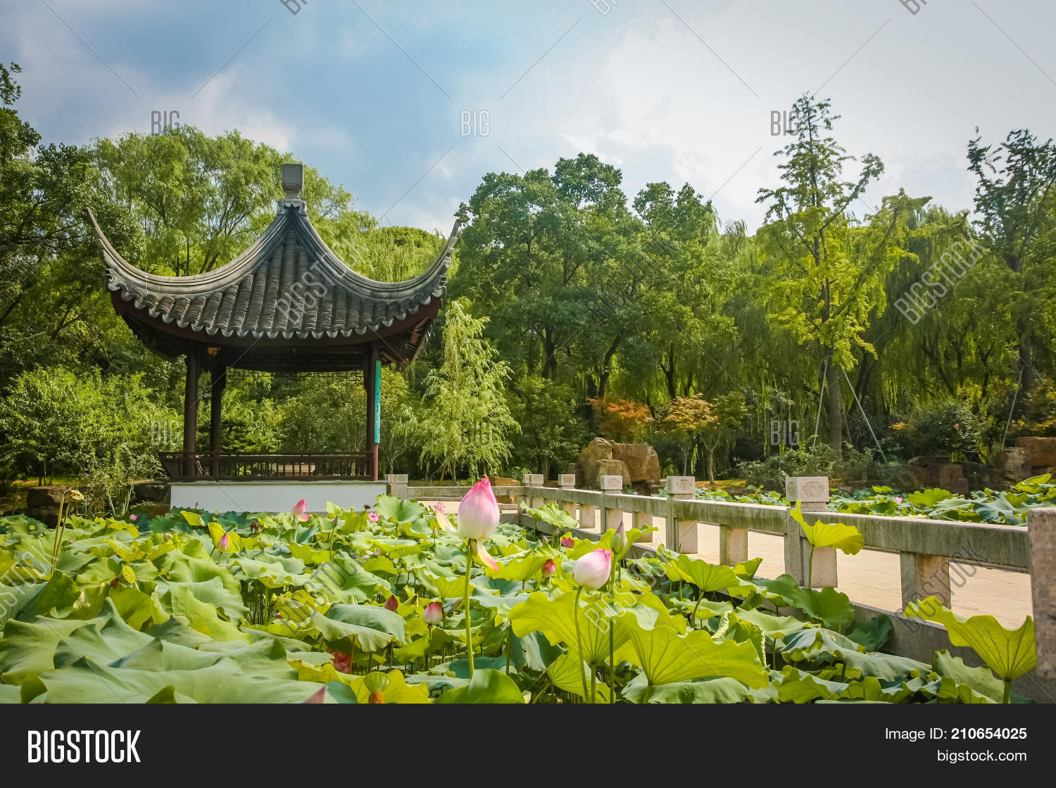 Classical chinese image photo free trial bigstock a classical chinese pavilion set against a pond of lotus flowers in a garden in suzhou izmirmasajfo
