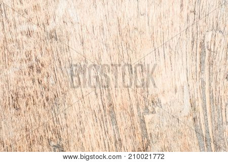Wood Texture Very Old Oak, The Rough Wood Is Not Uniform