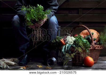girl farmer holding a bunch of parsley