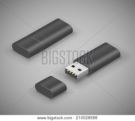 USB stick pen drive, black flash disk. Vector illustration in 3D looks isometry