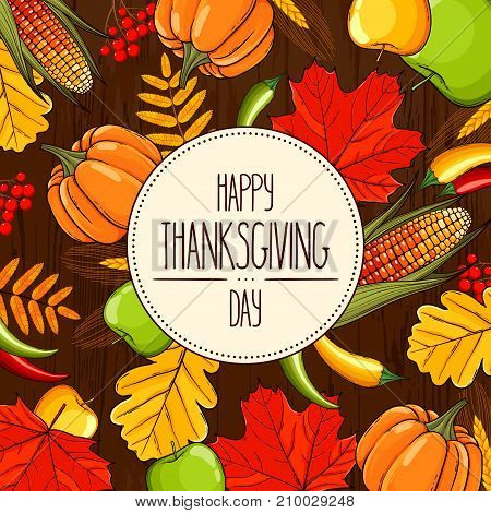 Hand drawn card Thanksgiving Day with banner. Corn pumpkin apple chilli ear rowan cranberries autumn maple and oak leaves on a wooden background. Vector illustration with lettering.