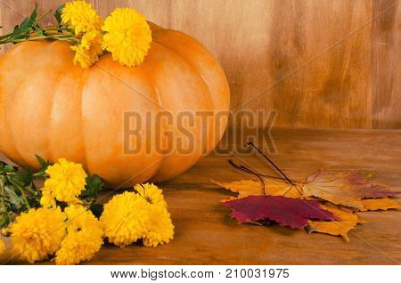 Orange pumpkin with yellow flowers and maple leaves against a wooden background (selective focus on the maple leaves and pumpkin) retro style