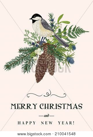 Christmas card with a bird winter plants and berries. Coniferous fir cones tit mistletoe fern. Vintage style. Botanical illustration.