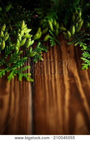 Branch of green thai on a wooden background
