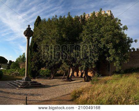Vila Vicosa Gothic Stone Pillory