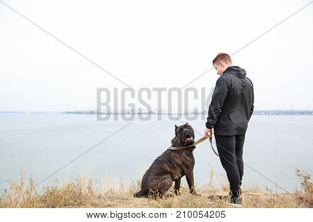 A big dark pitbull walking with owner outdoors. Cute dog standing near the man. River on the background. Copy space. Animal concept.