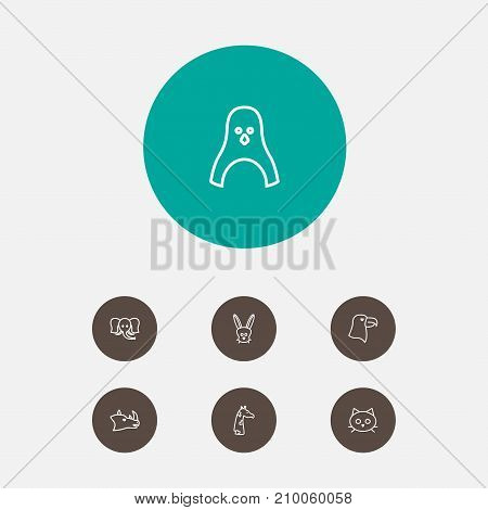 Collection Of Elephant, Penguin, Giraffe And Other Elements.  Set Of 7 Animal Outline Icons Set.