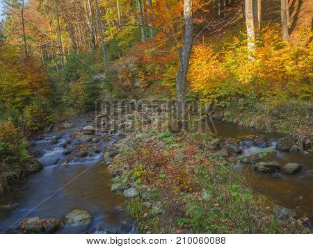 Long Exposure Magic Forest Stream Creek In Autumn With Stones Moss Orange Trees And Fallen Leaves In