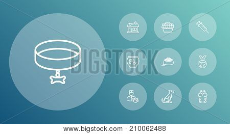Collection Of Vet, Sitting, Medal And Other Elements.  Set Of 10 Animals Outline Icons Set.