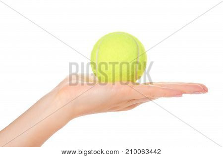 Single Tennis Ball In Hand Isolated On White Background