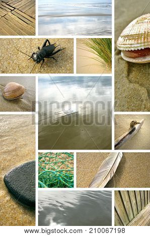 Many images on a collage about beach theme