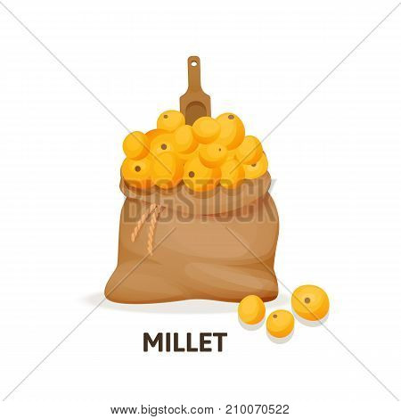 Concept of grain crops in bags. Bag of millet culture and wooden spoon, herbaceous plant, an agricultural crop, useful natural organic food, dishes, ingredient for getting grain. Vector illustration.