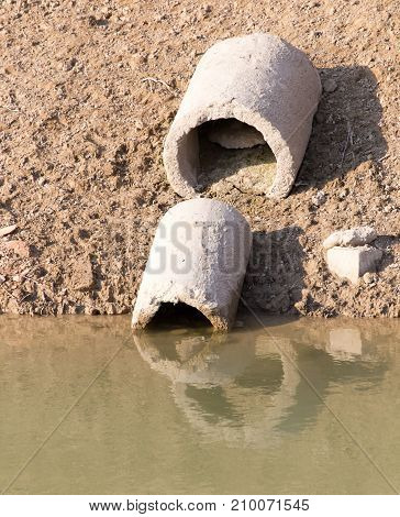 Trubaev stone in water . In the park in nature