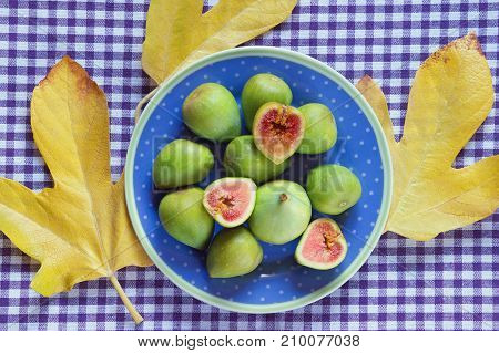 Ripe fig fruits on the blue plate and yellow leaves of fig tree