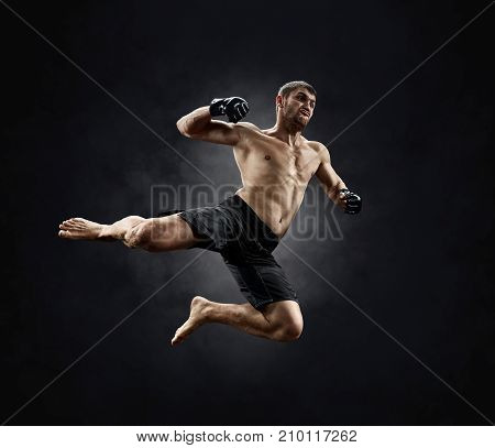 mma male fighter with hands raised up, view from the back, isolated on black background