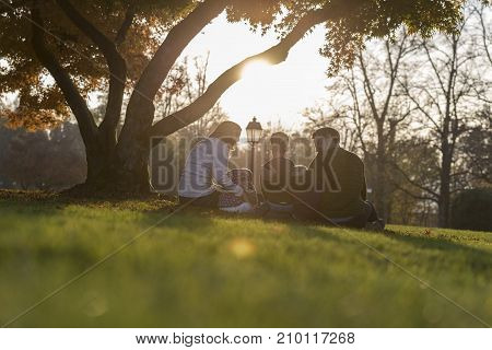 Concept of family values and happiness - young family with three kids sitting under autumn tree enjoying a day together backlit by a beautiful evening sun.