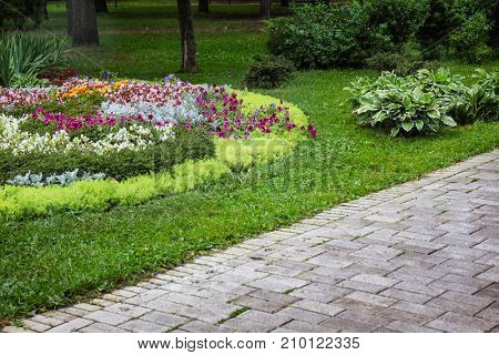 Beautiful view of flowerbed in park