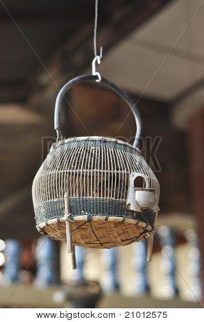 Francolin Bird Birdcage Wood Hang Thailand