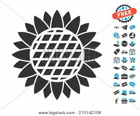 Sunflower Flower icon with free bonus icon set. Vector illustration style is flat iconic symbols.