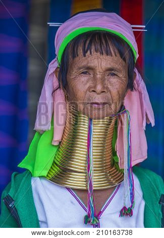KAYAN STATE MYANMAR - SEP 09 : Portrait of Kayan tribe woman in Kayan state Myanmar on September 09 2017 Kayan tribe woman are well known for wearing neck rings.