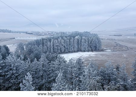 trees covered by snow on beautiful mountain hill. natural winter background