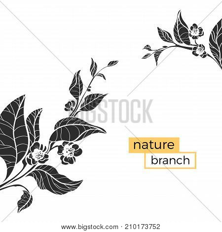 Template with silhouette of branches. Vector floral illustration. Realistic leaves and flowers on white background. Design shape. Copy space. Eps.10