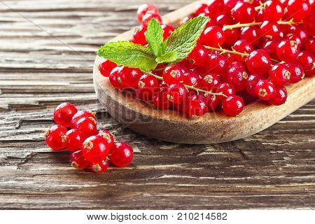 Ripe redcurrants in a wooden plate on a rustic wooden background.