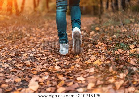 Movement of man in the park. A man stops walking. The girl's girlfriend's. Hot girls on the nature in the park among the leaves of yellow. Autumn park in bright colors.