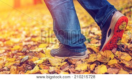 A man stops walking. Movement of shoes park full of leaves. The girl's girlfriend's. Hot on nature park among the leaves of yellow. Autumn park bright colors