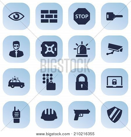 Collection Of Surveillance, Strongbox, Protection And Other Elements.  Set Of 16 Safety Icons Set.