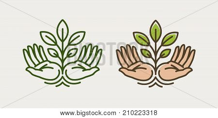 Sprout in hand. Agriculture, farming logo or symbol. Ecology, environmental protection, natural organic icon