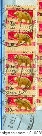 GOMEL, BELARUS, 13 OCTOBER 2017, Stamp printed in Russia shows image of the Bears, circa 2008.