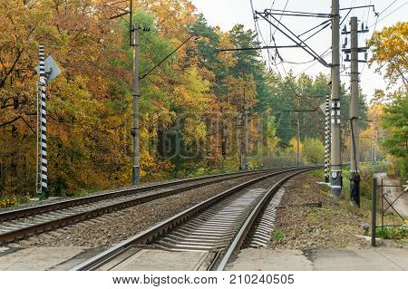 Railroad tracks on background of autumn forest