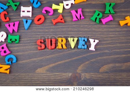 survey. various colored wooden letters on a dark plate.