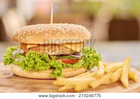 Appetizing fresh burger and french fries. Chicken, onion, lettuce, tomatoes, cucumbers, cheese sandwich and fried potato.