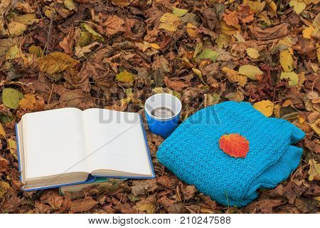 Open book cup of hot coffee and knitted sweater on the foliage in the forest at sunset. Back to school. Education concept. Beautiful autumn background. Picturesque composition. Weekend in the Park.