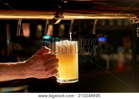Dispensing draught beer in glass. Barman hand at beer tap pouring fresh cold beer. Beer pouring from a tap in restaurant.