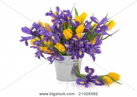 Tulip And Iris Flowers
