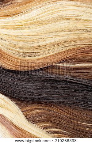 Real woman hair texture. Human hair weft, Dry hair with silky volumes. Real european human hair wallpaper texture. Brown blond dark blonde and black.