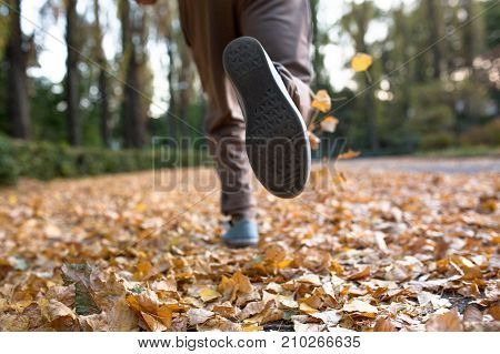 Autumn jogger legs close up image. Male running on dried lleaves in autumn park. poster