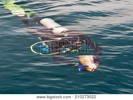 The Scuba Diver Underwater