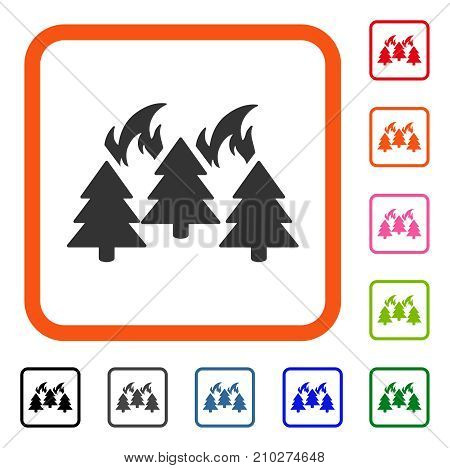 Forest Fire Disaster icon. Flat gray iconic symbol inside an orange rounded rectangle. Black, gray, green, blue, red, orange color variants of Forest Fire Disaster vector.