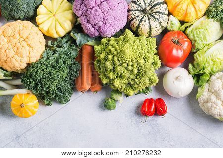 Overhead view, healthy eating, colorful rainbow vegetables on the light grey background, copy space for text below, selective focus