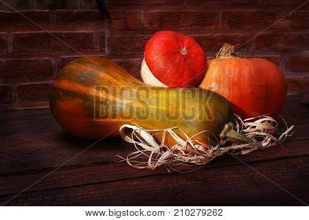 Autumn pumpkin background of thanksgiving - assorted pumpkins on a wooden shelf on a brick background