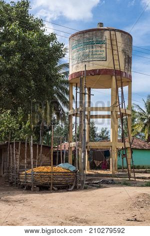 Belathur India - October 28 2013: Beige painted tall water tower at corn processing farm in the village. House and laundry harvested ripe yellow corn cobs in pen dirt and green trees.