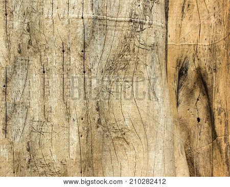 Old wood wall surface. View from the top